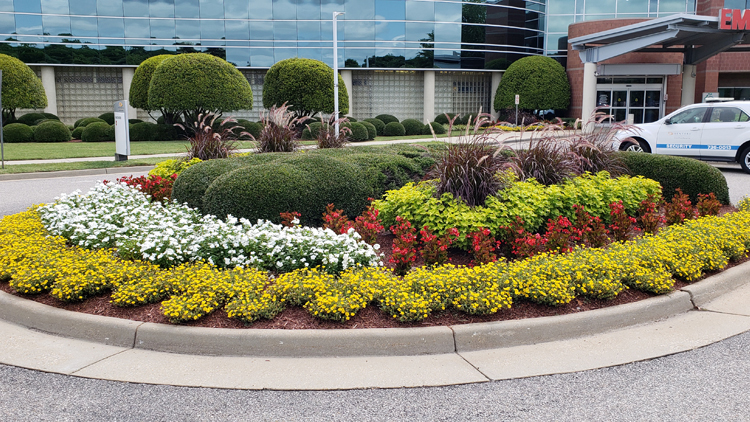Commercial Landscaping Project Photo Gallery Virginia